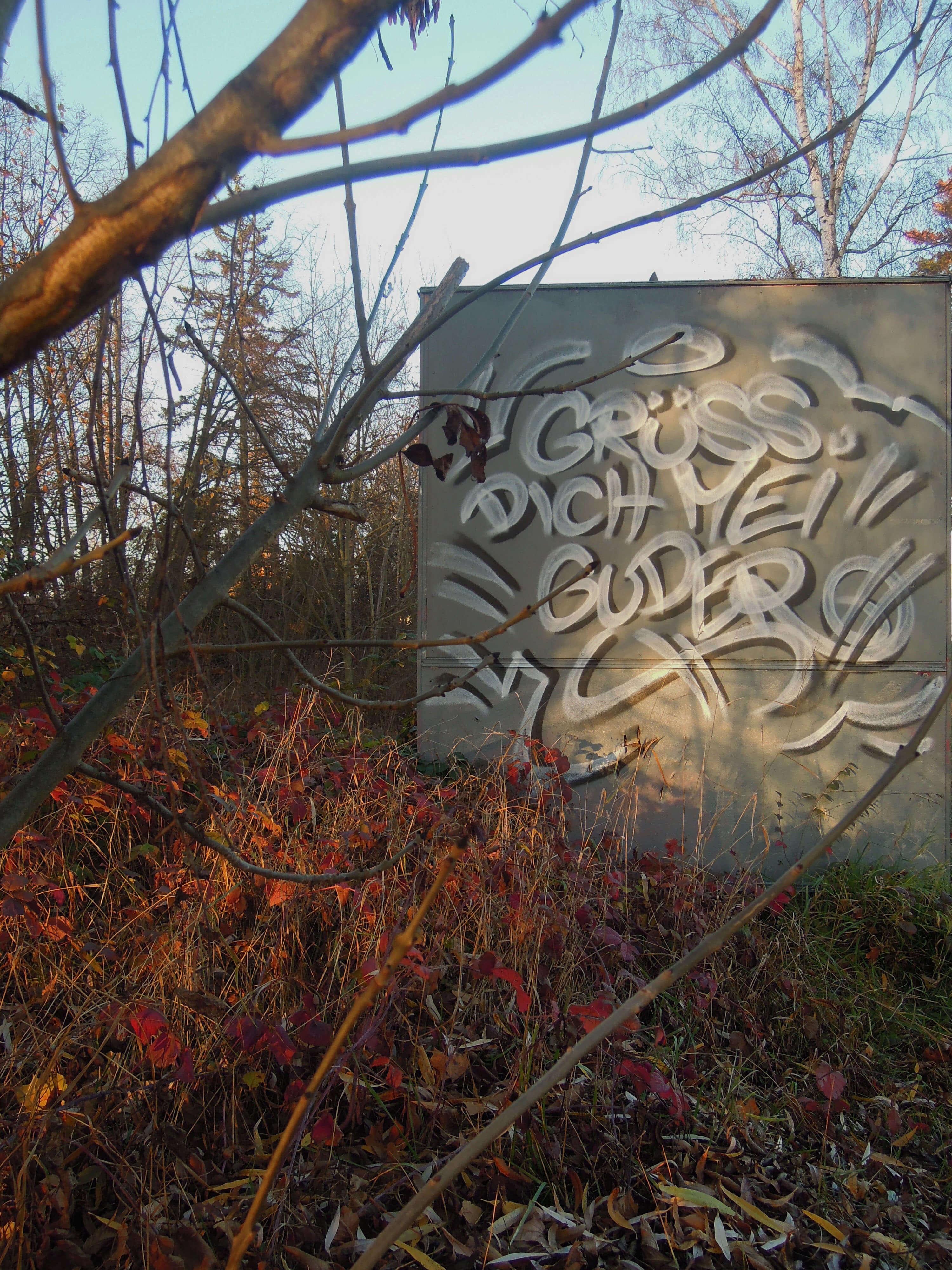 Vegetation. Kunst und so - Grüß dich mei Guder. Street Art. Graffiti Coburg. JDE TDN CSW GDMG!